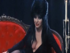 Cassandra Peterson Elvira Mistress Of The Dark