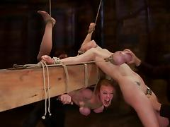 Two bitches get their tits bondaged and tied on the bar