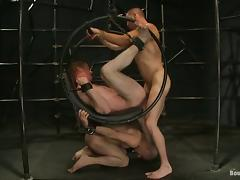 Three Attractive Poofters Play Bondage Games Together